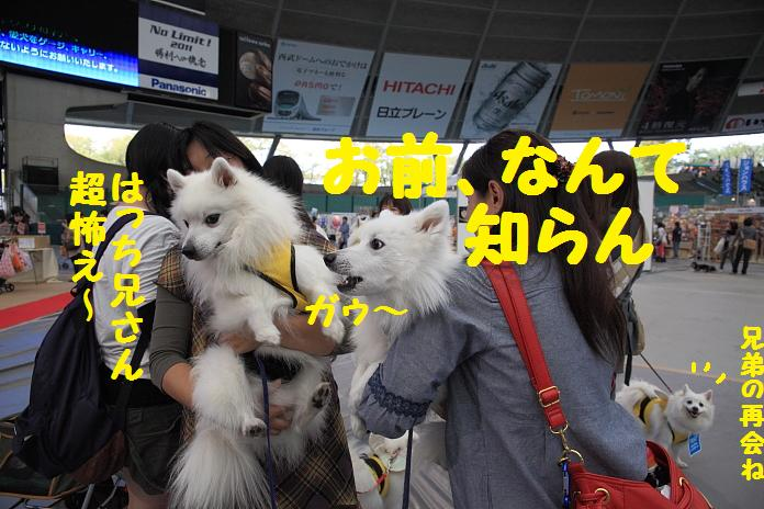 IMG_72282010.jpg
