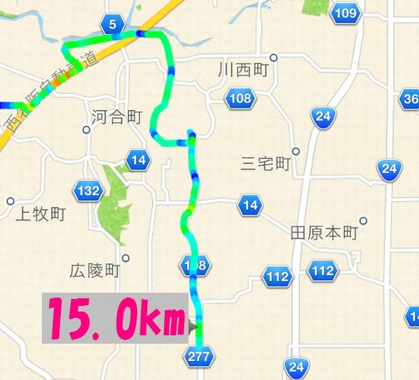 saiK16(544.jpg