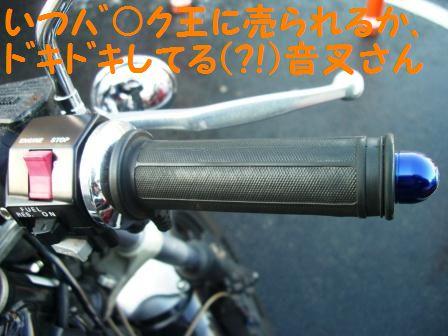 CIMG8122.jpg