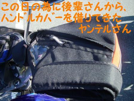 CIMG8127.jpg