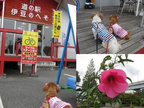 2011_10_201_convert_20111023204309.jpg