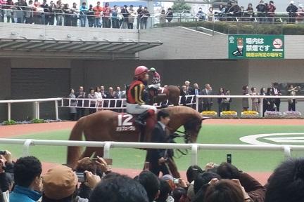 オルフェ阪神大賞典