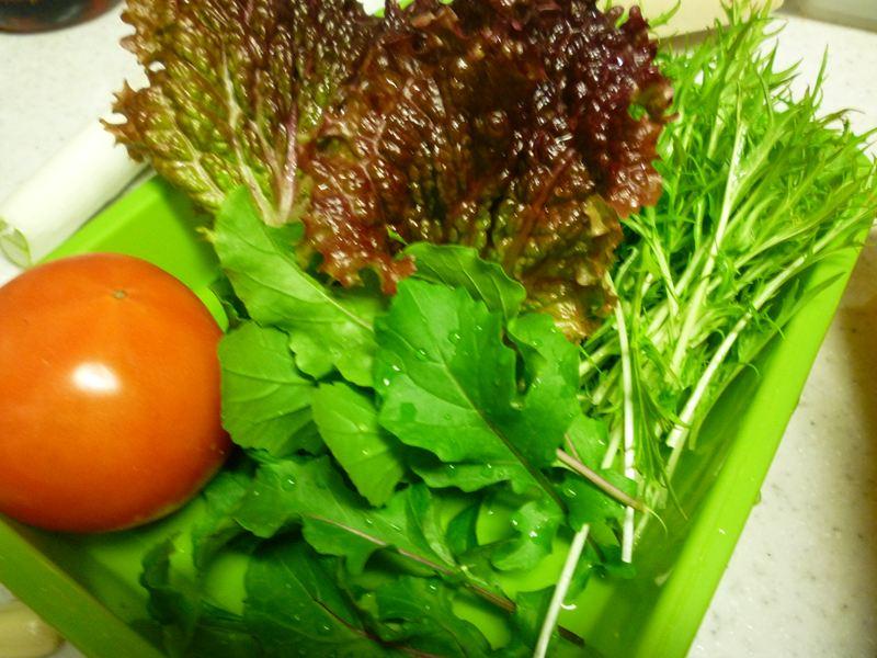 庭の野菜たち