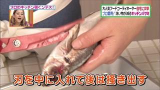 horie-sachiko-011.jpg