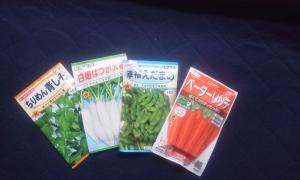 KIMG2009_convert_20140224141842野菜種
