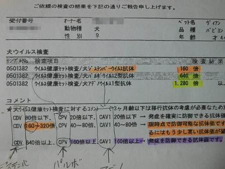 20556-3.jpg