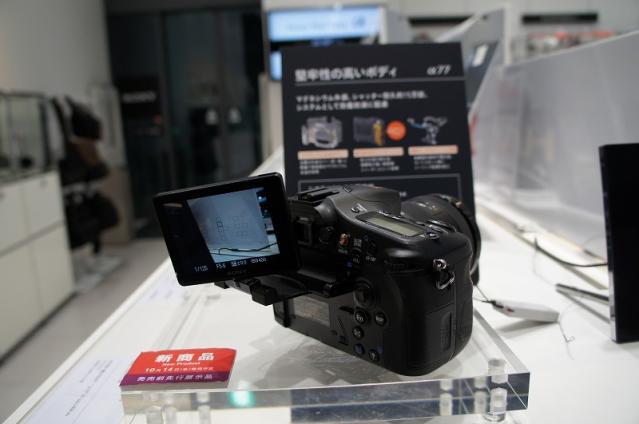s-DSC00353.jpg