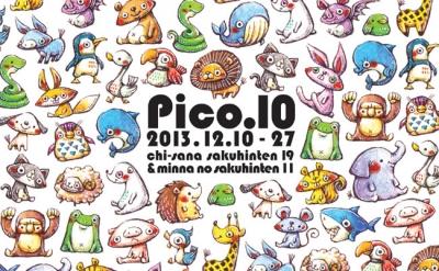 pico10_dm.jpg