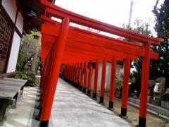 udon29_01tamura04.jpg