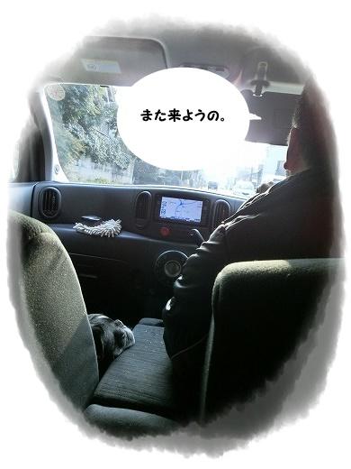 CIMG1340.jpg