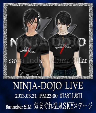 ninja130331_.jpg