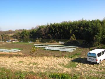 st88_06tm.jpg