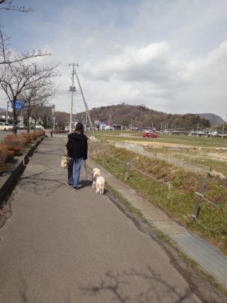 DSC01366_convert_20120429115544fukushima.jpg