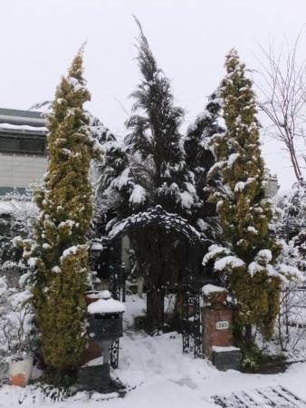 2014-02-08_17.jpg