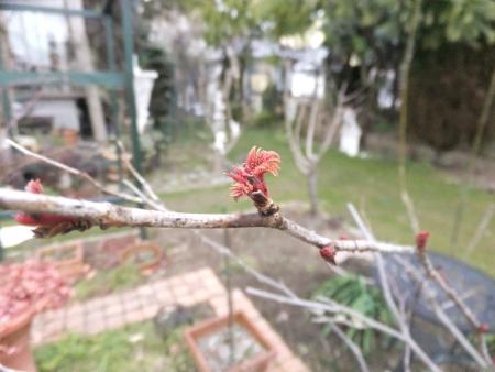 2014-02-17_04.jpg