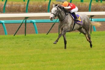 2012皐月賞1