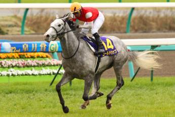 2012皐月賞2