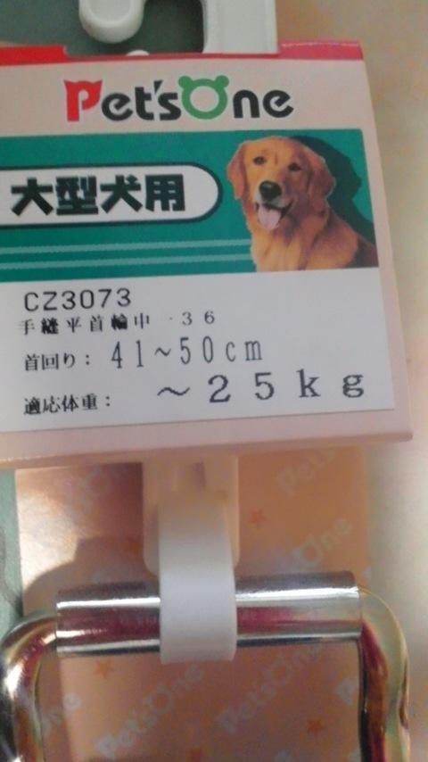 009_20120422180438.jpg
