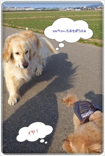 2014,2,20お散歩3