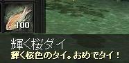 みるざ魚1