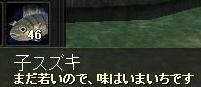 けいひ魚1