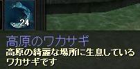 けいひ魚3