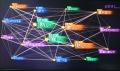 意識のネットワーク