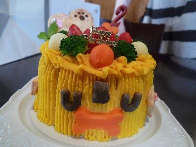 健康ママさんのバースディケーキ~