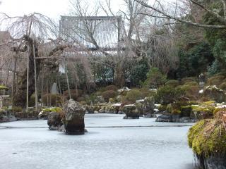竹林院・庭園