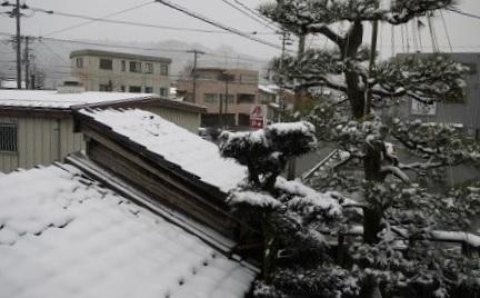 0204haruyuki01.jpg