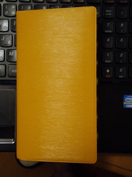PA200199 (434x580)