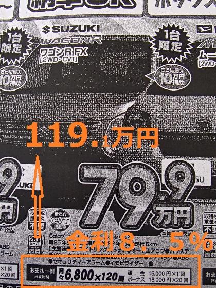P2031061.jpg