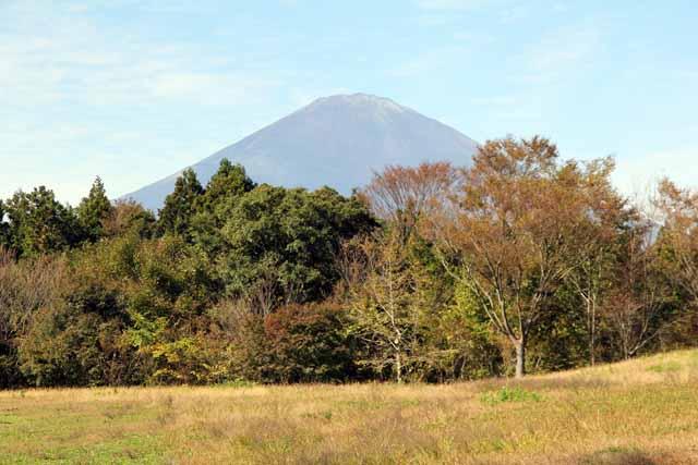 ashigarasa5