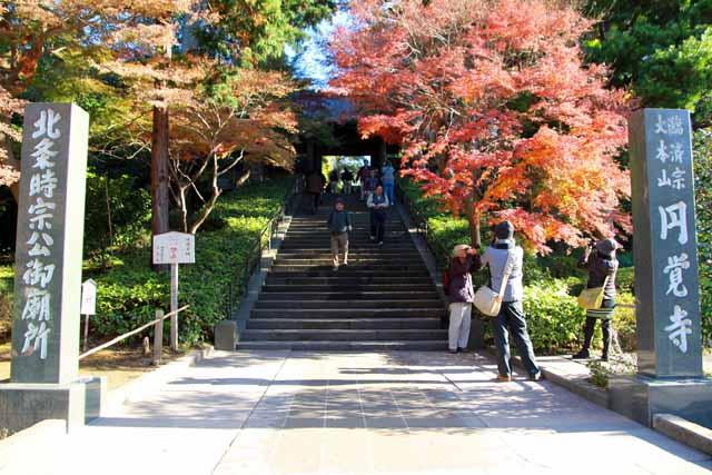 kouyounokamakura1