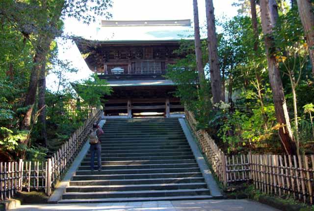 kouyounokamakura4