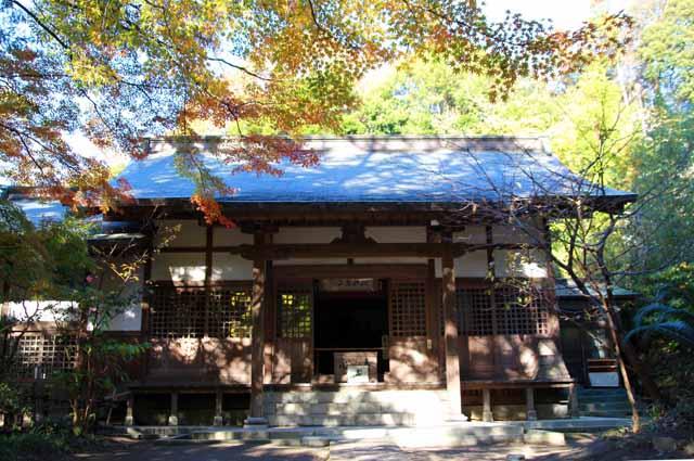 kouyounokamakura6