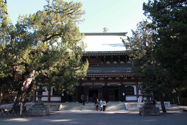 kouyounokamakura7