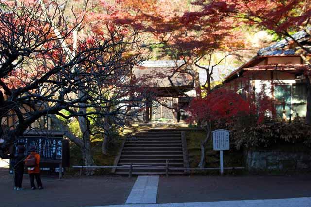 kouyounokamakura12