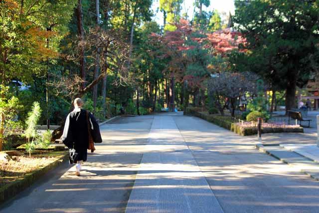 kouyounokamakura13