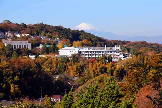 kouyounokamakura18