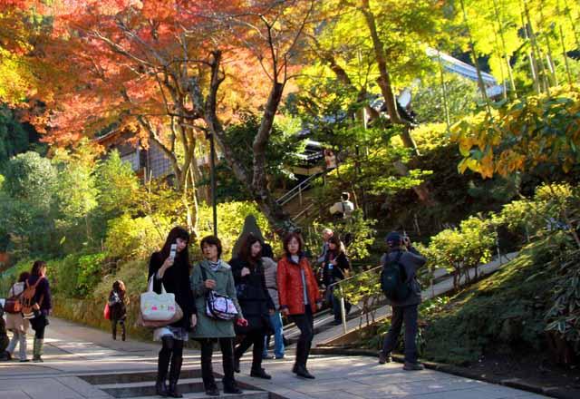 kouyounokamakura23