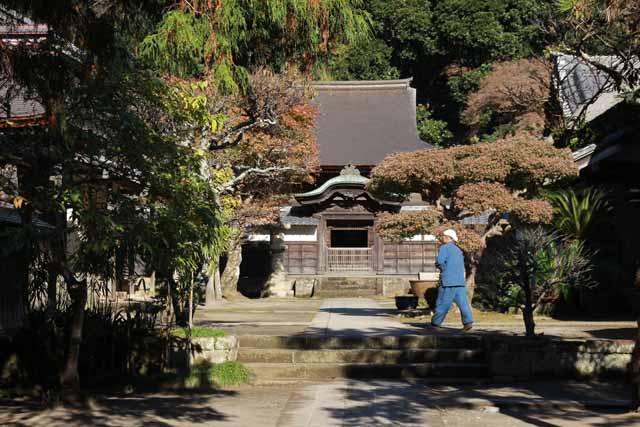 kouyounokamakura25