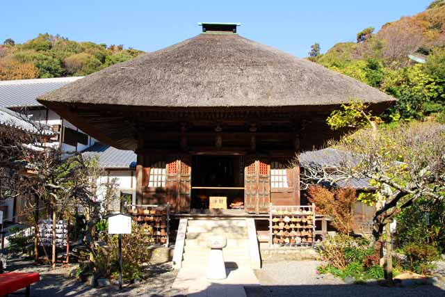 kouyounokamakura26