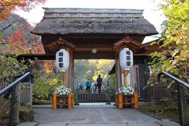 kouyounokamakura31