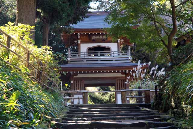 kouyounokamakura37