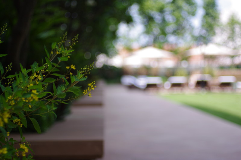 20100505_hotel06.jpg