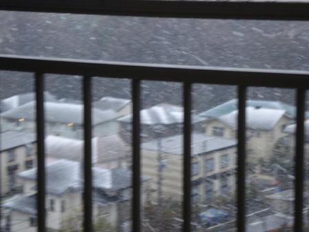 今年の初雪わっほい