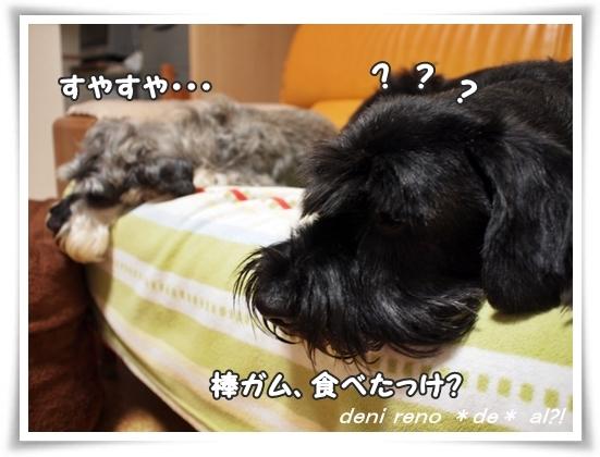 0910_1d.jpg