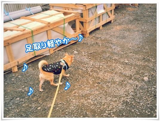 20140206_151940karoyaka.jpg