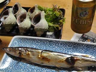 秋刀魚と青つぶ